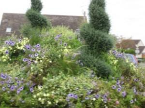 topiary & bedding