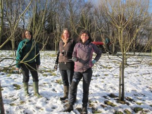 pruning gang
