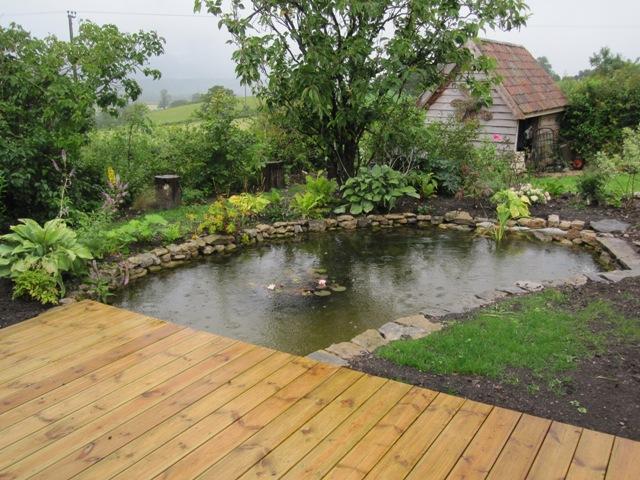 Wildlife pond somerset angela morley garden design for Design wildlife pond